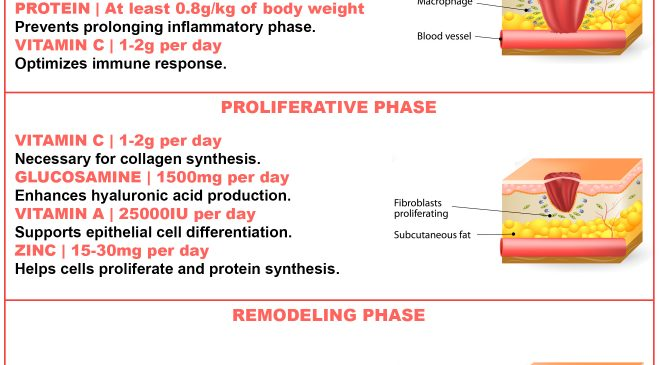 dietary protein intake promotes wound healing