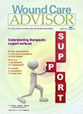 Wound Car Advisor Journal Cover
